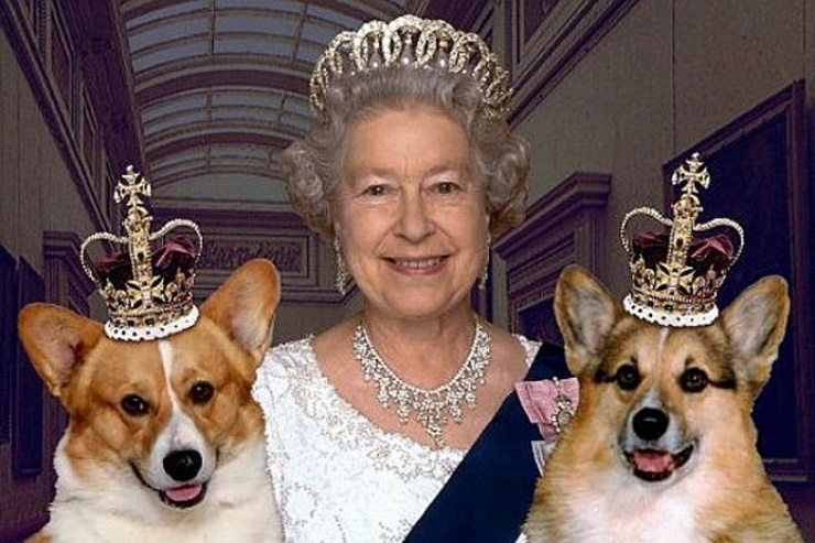 Необычные правила и обычаи британской королевской семьи